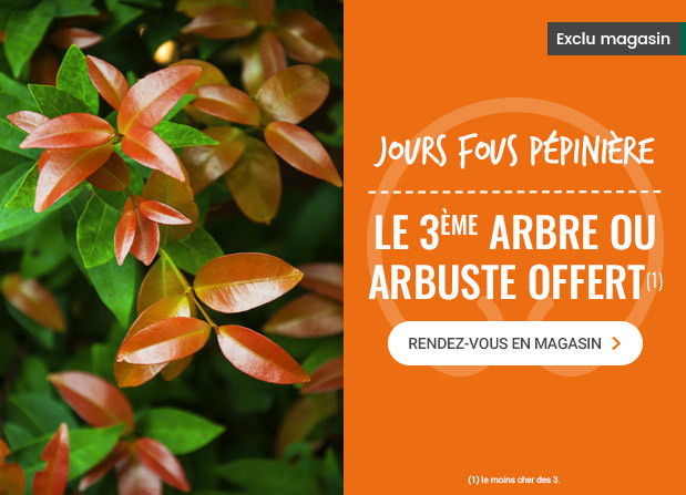 JOURS FOURS PEPINIERES