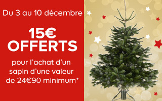 OFFRE SAPIN
