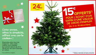 Offre sapins