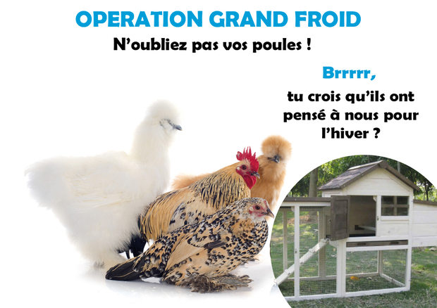 Opération Grand Froid
