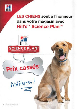 Opération HILL'S chiens